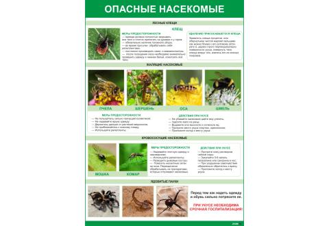 2003 Плакат Опасные насекомые