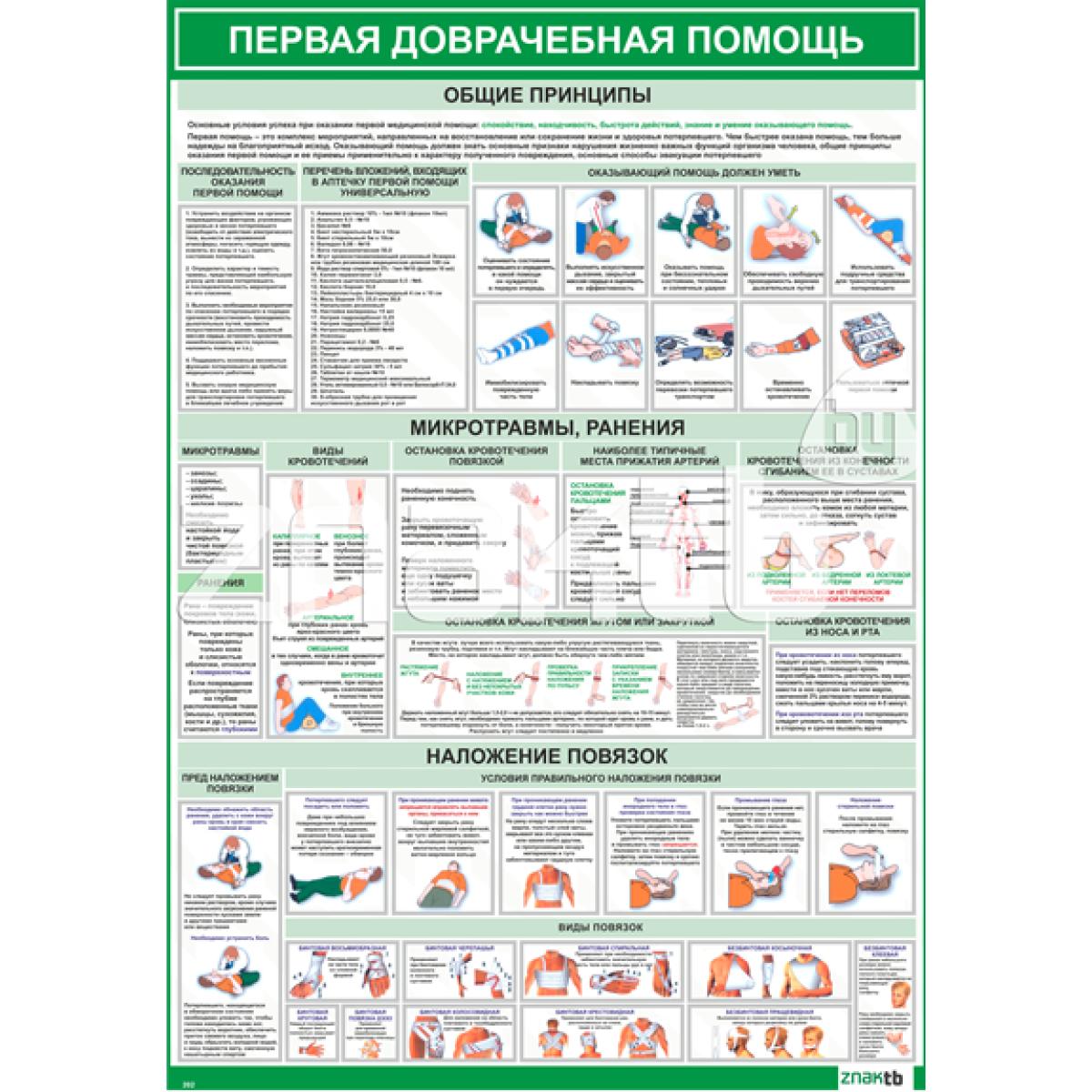2202 Плакат информационный  Первая медицинская помощь