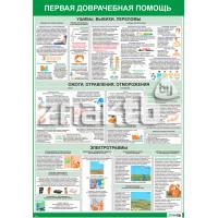 2203 Плакат информационный  Первая медицинская помощь