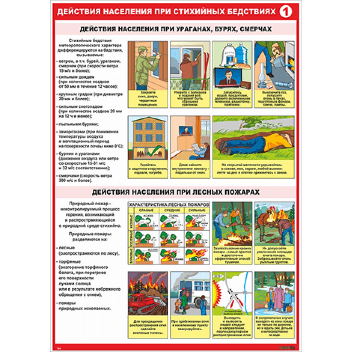 Действия населения при стихийных бедствиях часть 2