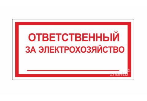 147 Знак Ответственный за электрохозяйство