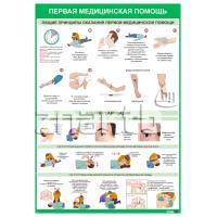 Плакат информационный Общие требования и реанимация