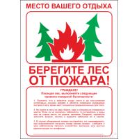 2620 Плакат Берегите лес от пожара (с текстом)