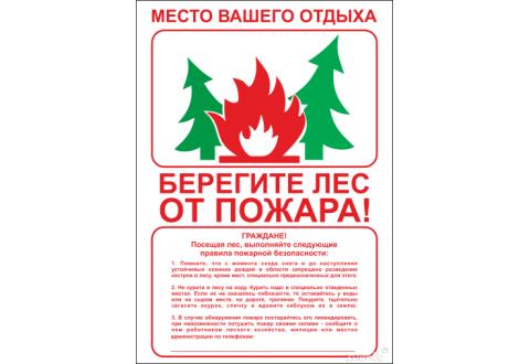 Плакат Берегите лес от пожара (с текстом)
