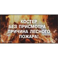 4052 Стенд Костер без присмотра - причина лесного пожара