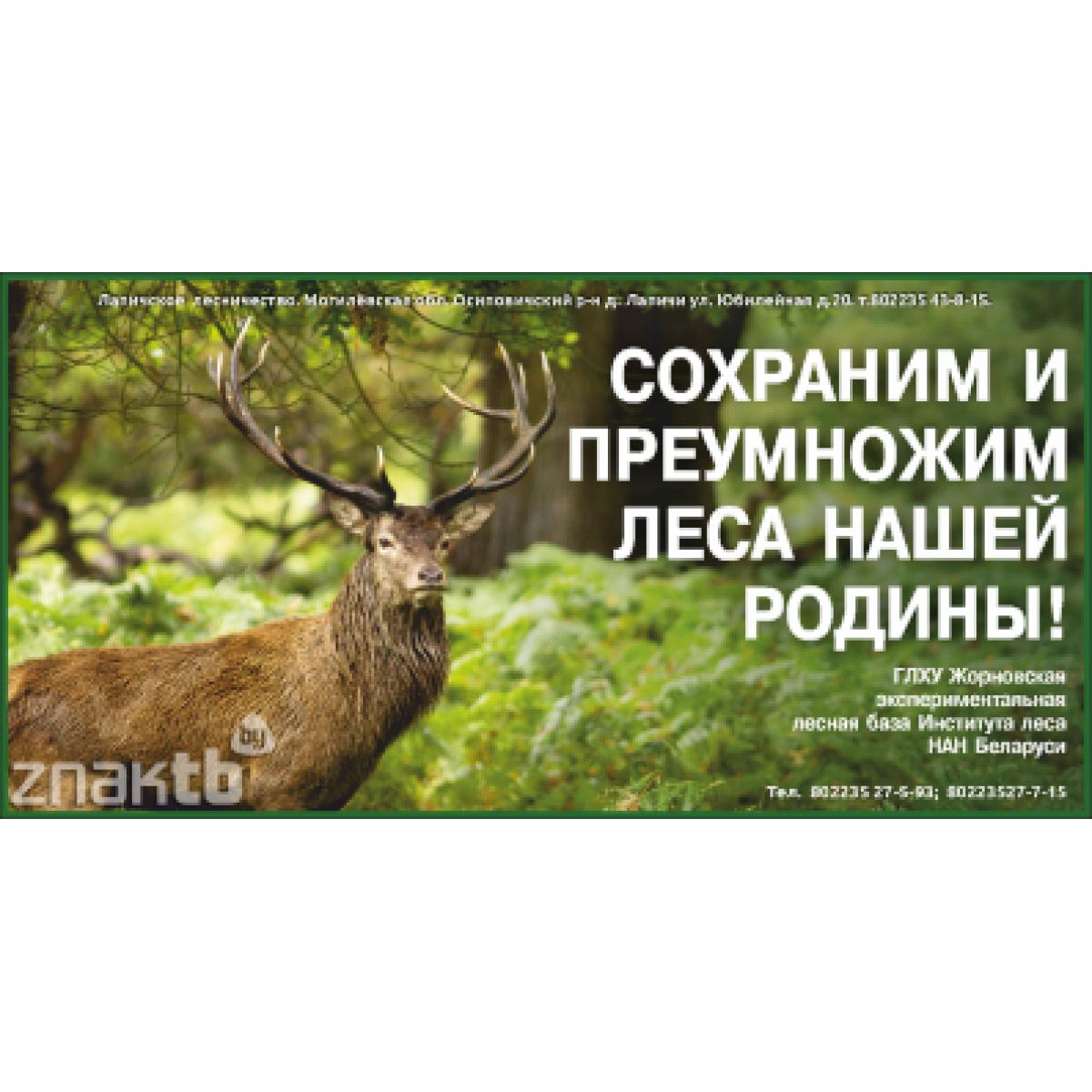 Стенд Сохраним и преумножим леса нашей Родины!