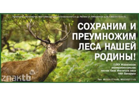 4057 Стенд Сохраним и преумножим леса нашей Родины!