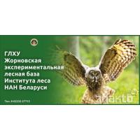 4051 Стенд ЛЕСХОЗ