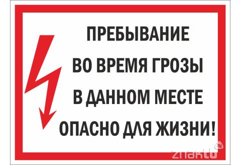 """177 Знак """"Пребывание во время грозы в данном месте опасно для жизни!"""""""